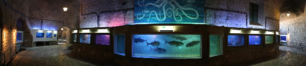 akvarijPan